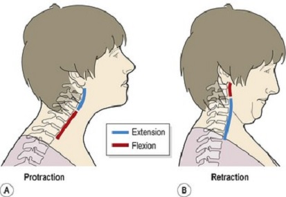 Neck retraction exercise physiotherapistmotherwell david steele because of the shape of your neck slight s bend the upper and lower spine can move in opposite directions look at the image below from ccuart Image collections